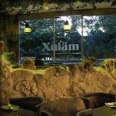 Restaurants-Playa-del-Carmen