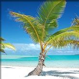 Bounty-eiland: Aitutaki (Nieuw-Zeeland)