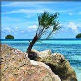 Bounty-eiland: Palau-eilanden (Micronesië)