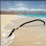 Bounty-eiland: Socotra (Jemen)